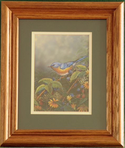 "Bluebird ""Berry Bush Lookout"" Framed Print."
