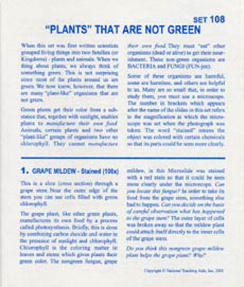 """Plants"" That Are Not Green (Microslide® Lesson Set)"