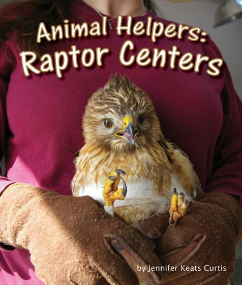 Raptor Centers (Animal Helpers Series)