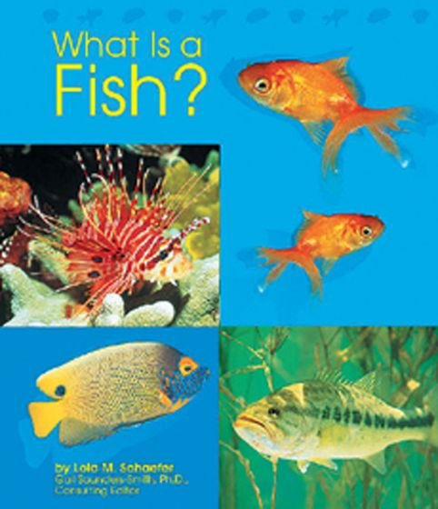 What Is A Fish? (Animal Kingdom Series For Ages 5-6)
