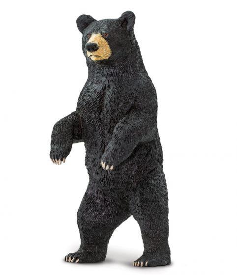 Bear (Black