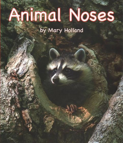Animal Noses (Animal Senses & Anatomy Series)