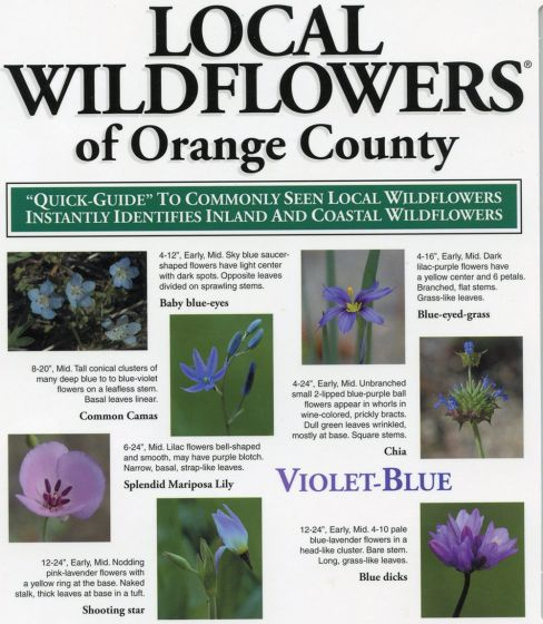 Local Wildflowers Of Orange County (Laminated Fold-Out Guide)