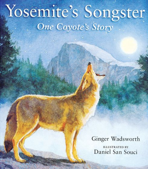 Yosemite'S Songster: One Coyote'S Story