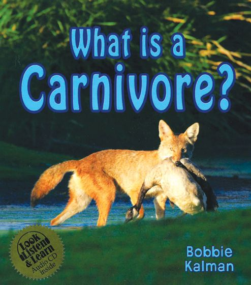 What Is A Carnivore: Look