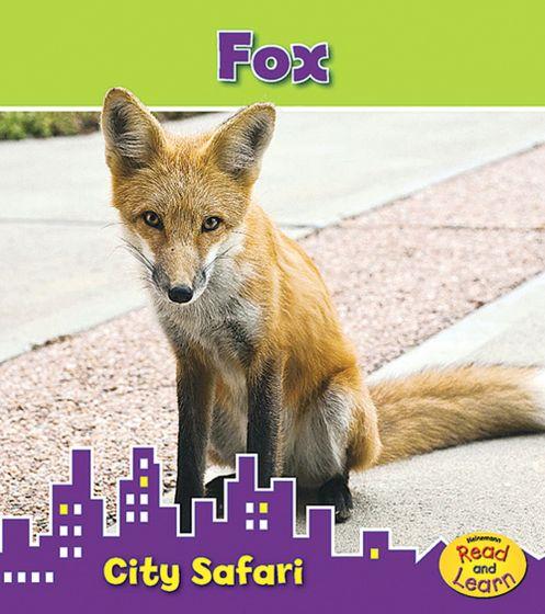 Fox (City Safari Series).