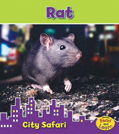 Rat (City Safari Series).
