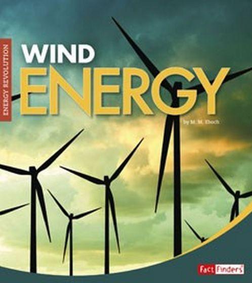 Wind Energy (Energy Revolution Series)