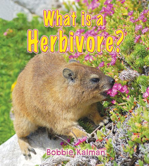 What Is A Herbivore? (Big Science Ideas Series)