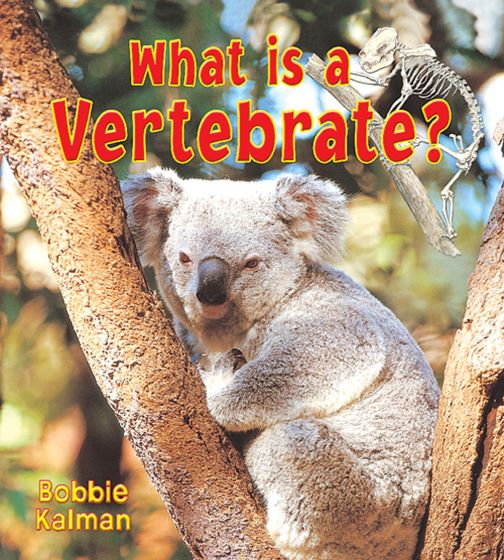 What Is A Vertebrate? (Big Science Ideas Series)