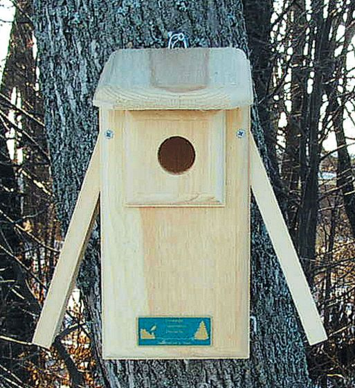 Two-Panel Bluebird House