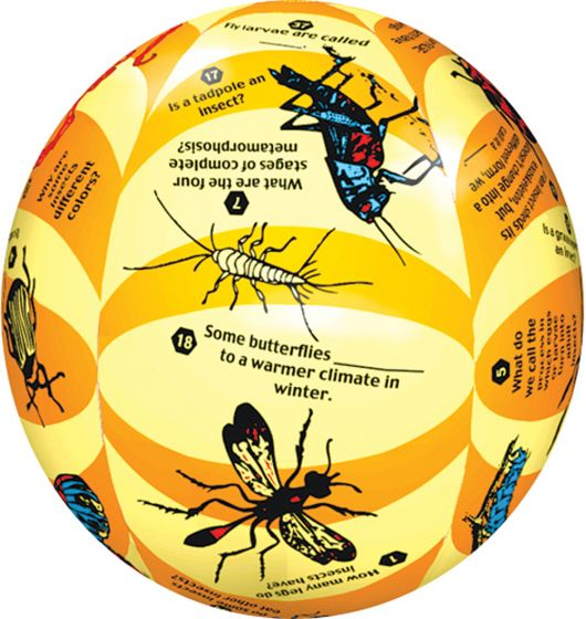 Insects Instructional Play Ball