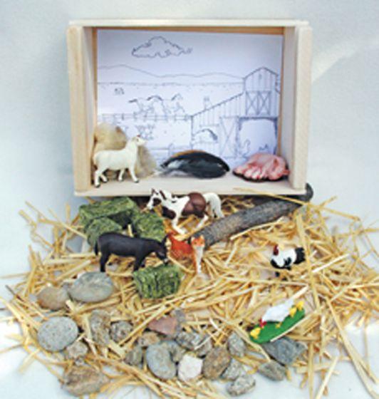 Barnyard Diorama (Create-A-Scene® Habitat Diorama Kit)
