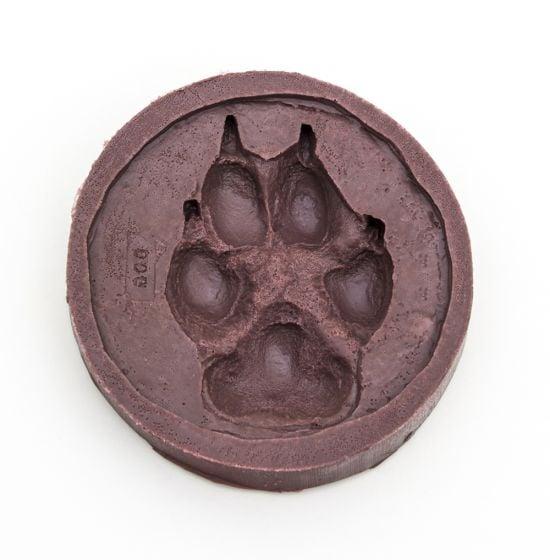 Dog (Domestic) Track Mold