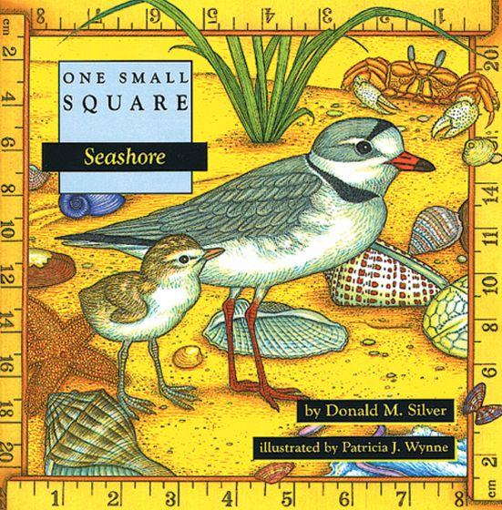 Seashore (One Small Square Series)