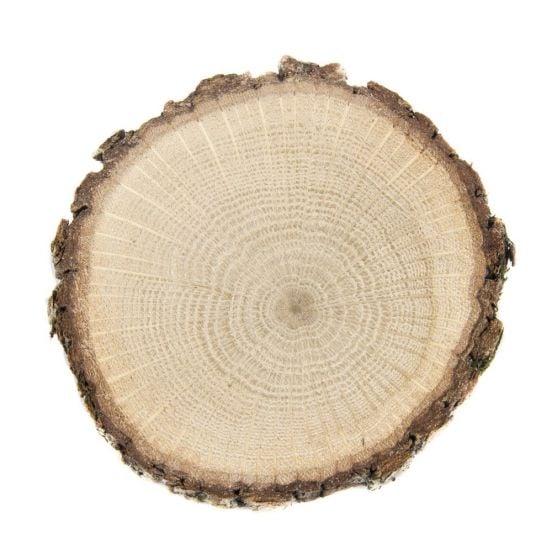 Oak (White) Tree Round
