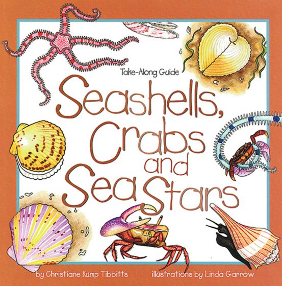 Take-Along Guide To Seashells