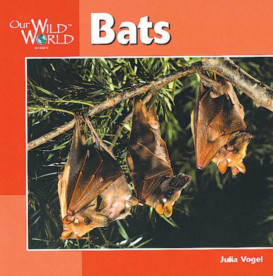 Bats (Our Wild World Series)