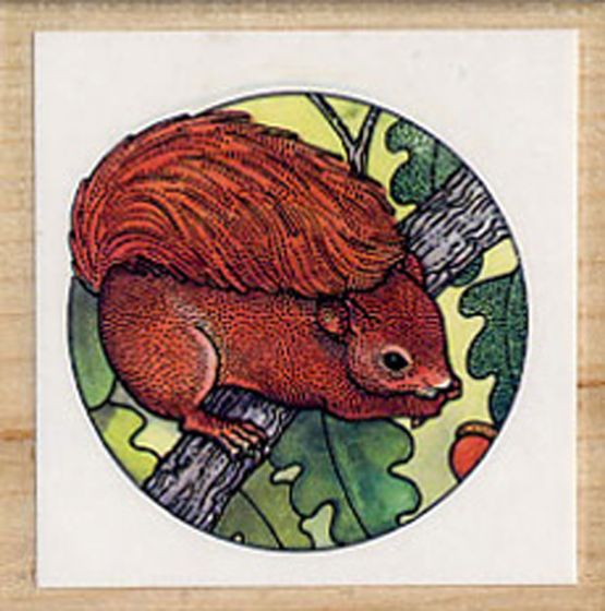 Squirrel (Red) Rubber Stamp