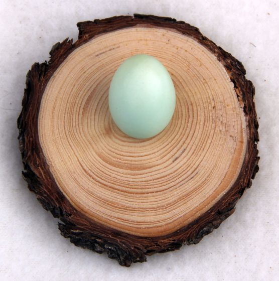 Natural Pine Egg Stand: Small.