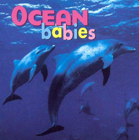Ocean Babies (Board Book)