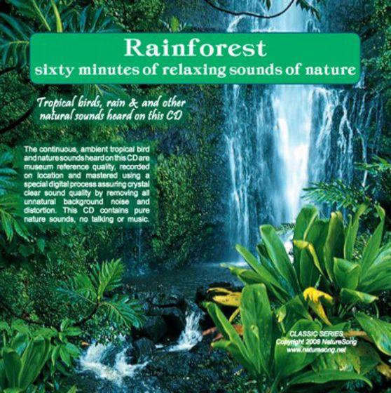 Rainforest: Naturesong Cd.