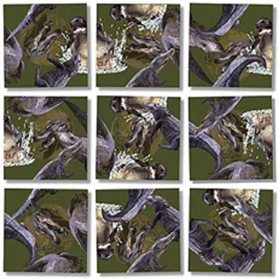Alligators Scramble Squares