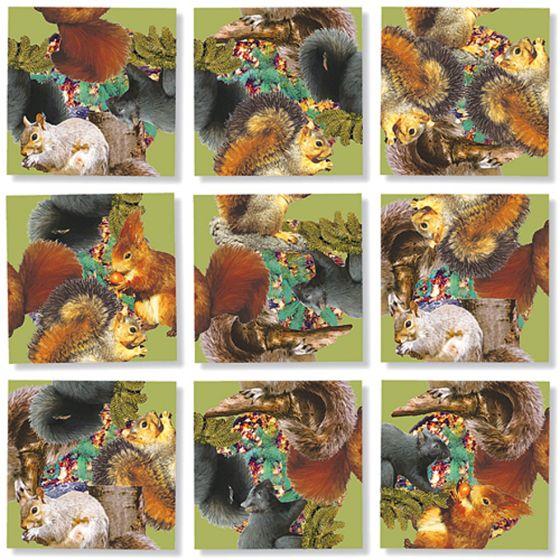 Squirrels Scramble Squares