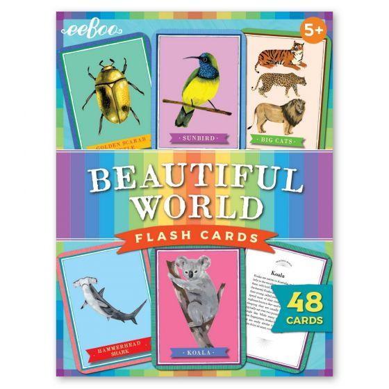 Beautiful World Flash Cards