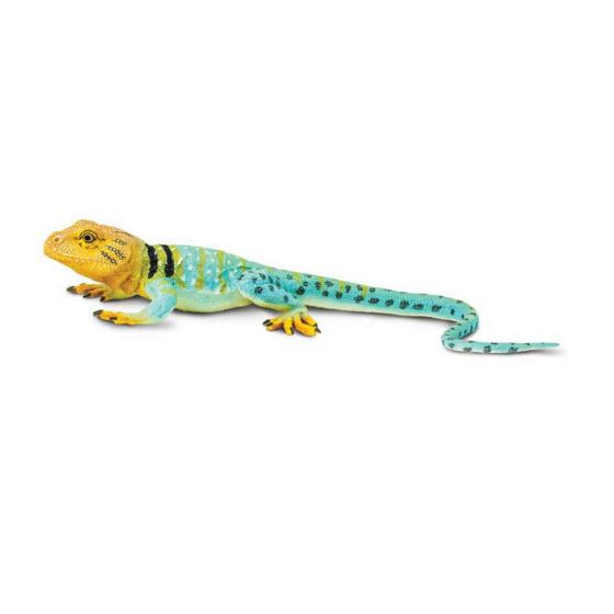 Lizard (Collared) Model