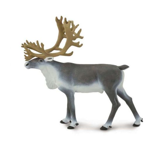 Caribou Model