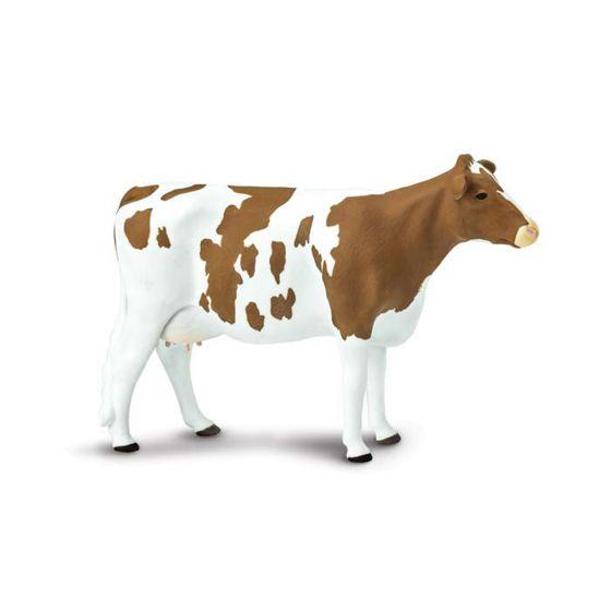 Cow (Ayrshire) Model