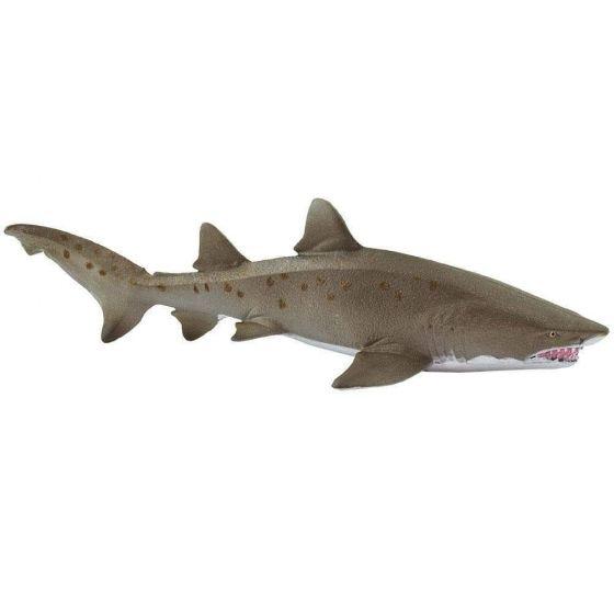 Shark (Sand Tiger) Model