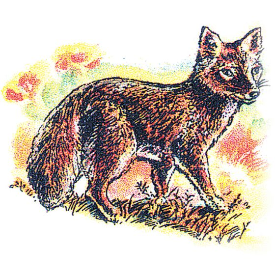 Fox (Kit) Rubber Stamp