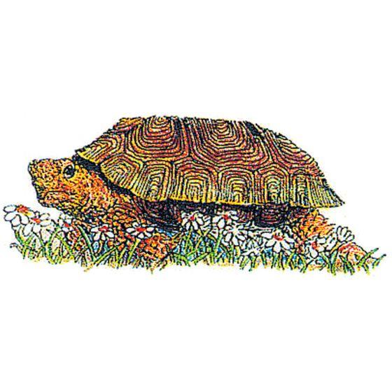 Tortoise (Desert) Rubber Stamp