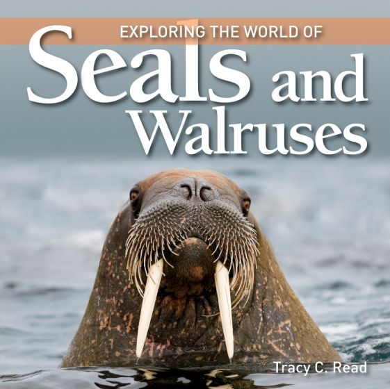 Exploring the World of Seals & Walruses