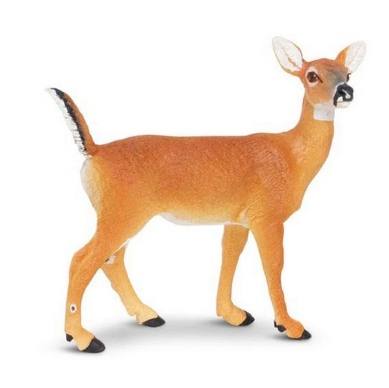 Deer (Whitetail Doe) Model