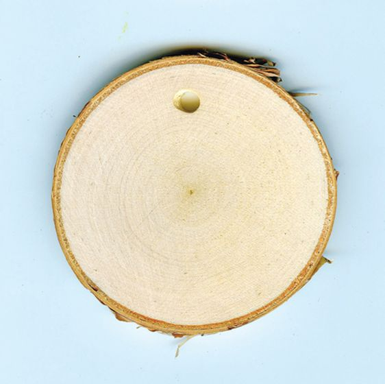 Tree Rounds For Art Projects (With Drilled Holes).