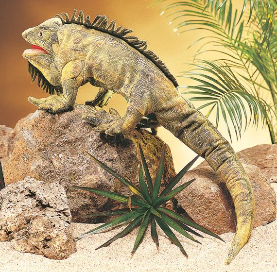 Iguana Puppet
