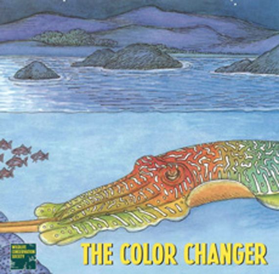 Ely Jelly: Color Changer Student Book