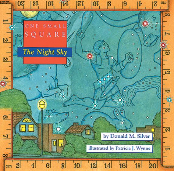 Night Sky (One Small Square Series)