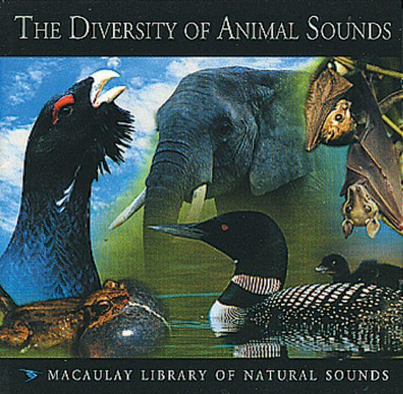 Diversity Of Animal Sounds