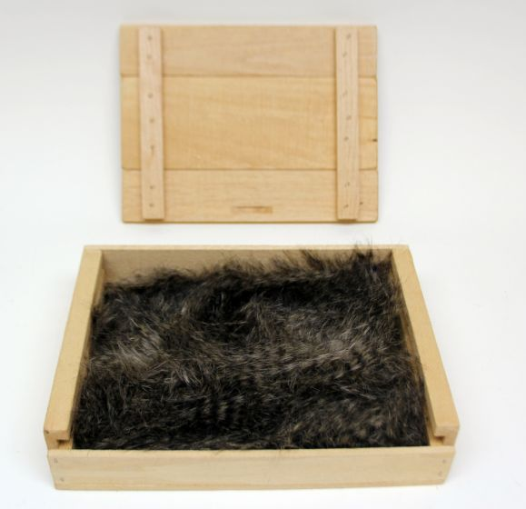 Raccoon Kind Fur® (Boxed)