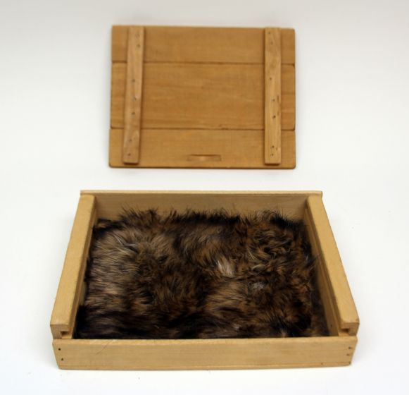 Bear (Grizzly) Kind Fur® (Boxed)