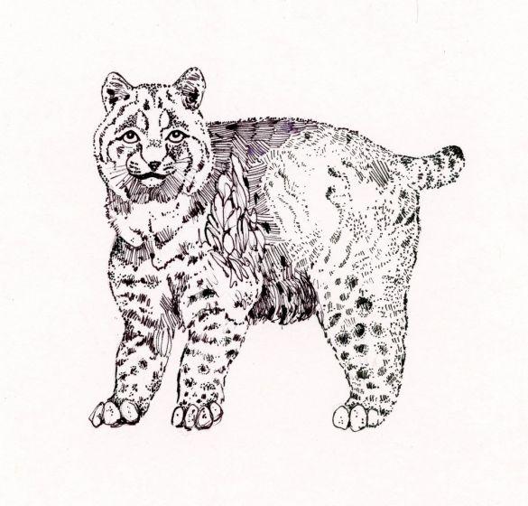 Bobcat Rubber Stamp