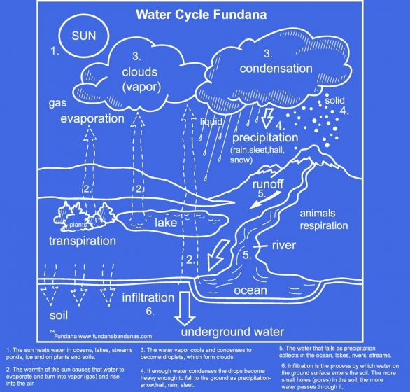 Water Cycle Scarf (Fundana® Bandana)