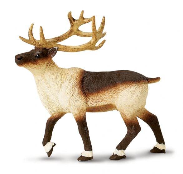 Reindeer Model