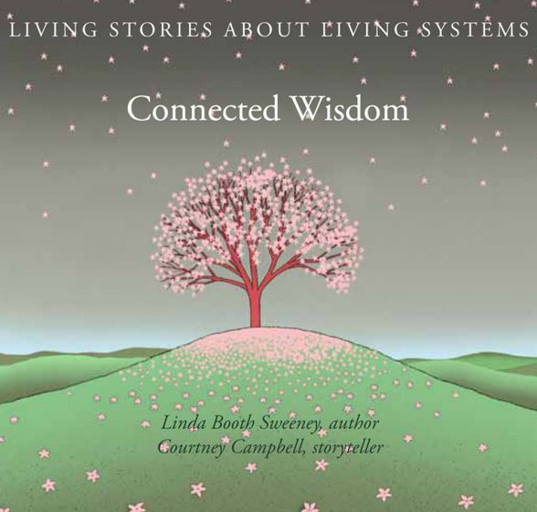 Connected Wisdom Cd