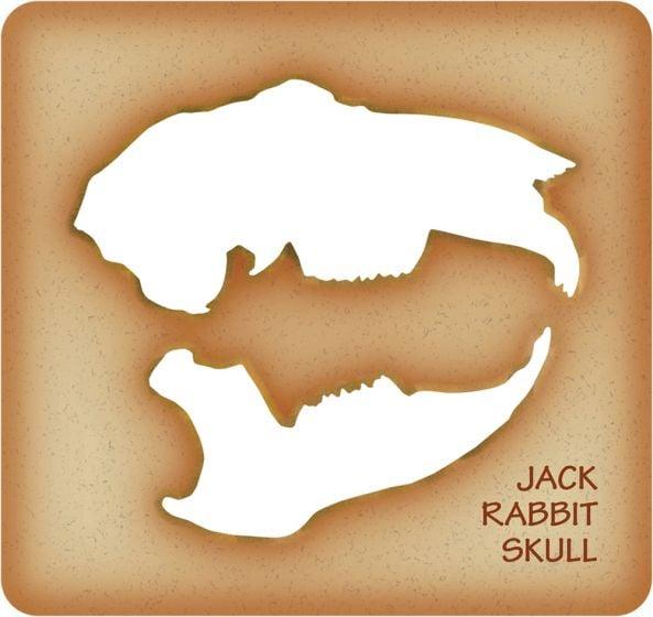 Jack Rabbit Trace-A-Skull® Template