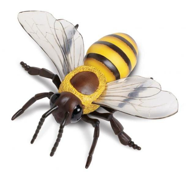 Bee (Honey) Model